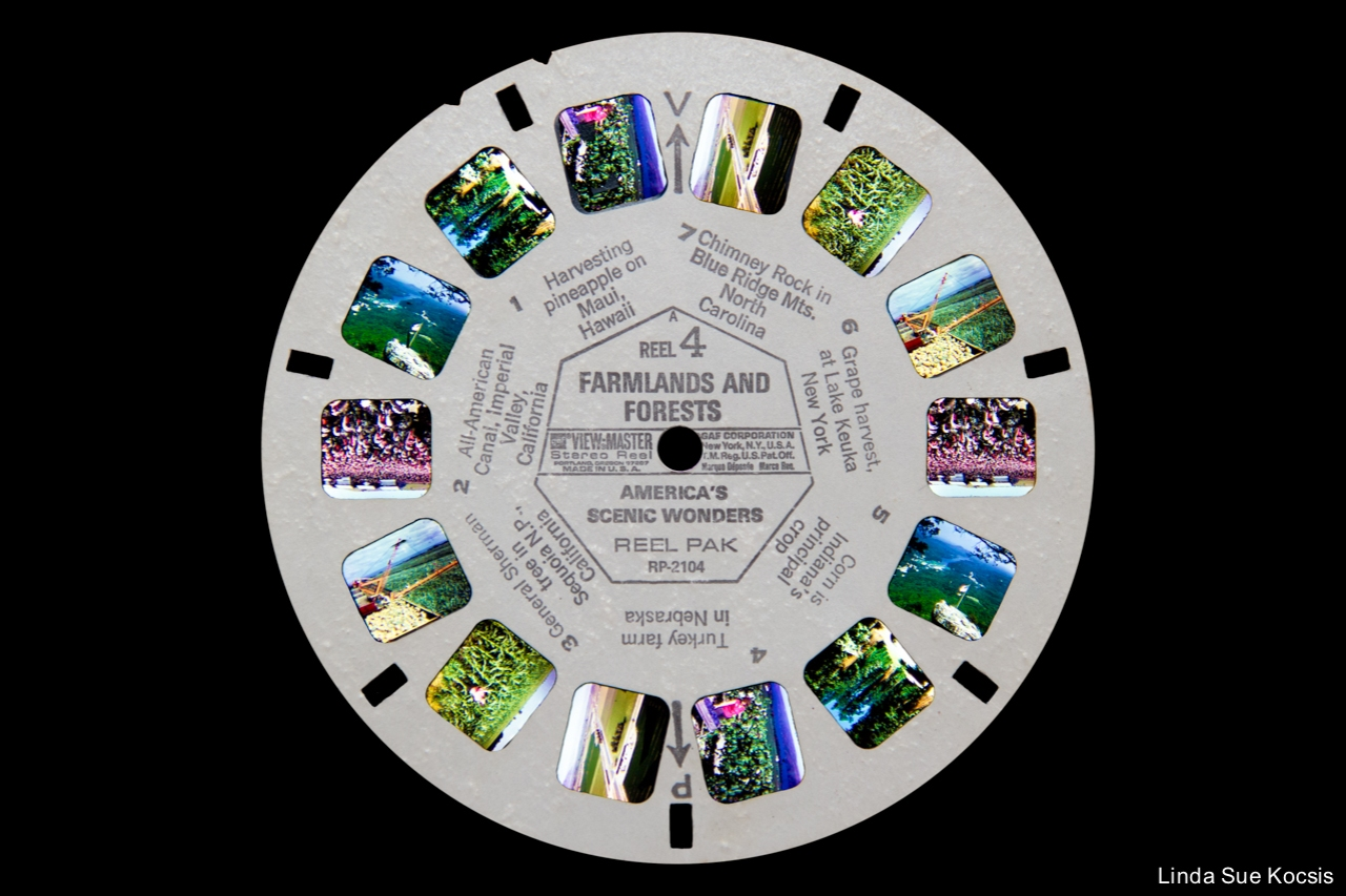 viewmaster_farmlandsandforests